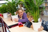 Air So PurePlanten in schoolklas