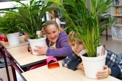 Air So PurePlanten in schoolklas