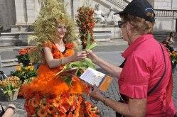 Roma, Festa floreale in onore del nuovo Re d'Olanda (16)