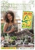AMIGO PLANT 1