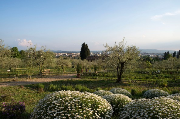 Il Giardino di Santa Maria Novella