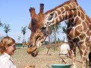 Safari Adventure Park Ravenna