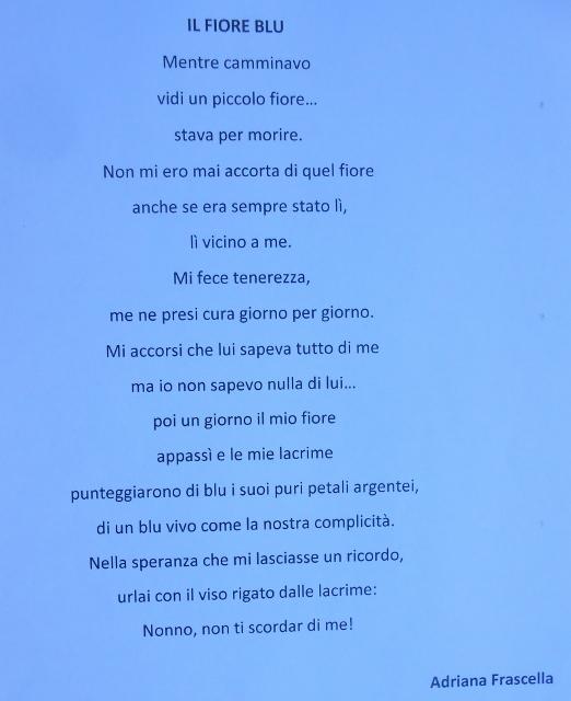 Menzione d'onore - Un fiore per voi 2014 (3)