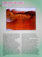 Ics Bovino FG (3)