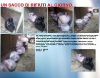 Nicolò Amore, Zogno BG (640x501)
