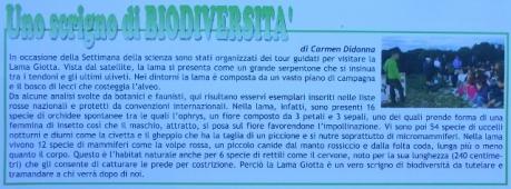 Circolo Didattico, Noicattaro BA