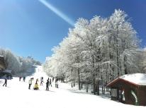 PAGINE 21-24 Sciare in Emilia Romagna (4)