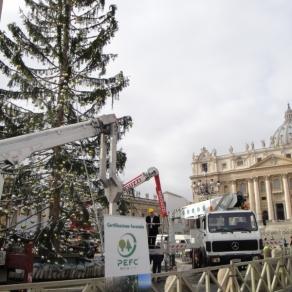 S.Pietro3 - allestimento albero di natale (2009) (800x600)