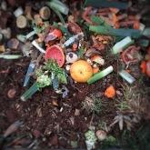 compost_t20_oEj0LQ