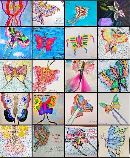 Farfalle aquilone FR