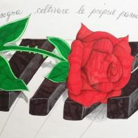 ANNO DELLE ROSE / ALBUM IMMAGINI,  DITELO CON LA ROSA: DISEGNI DALL'I.C. VIALE LIGURIA, ROZZANO (MI)